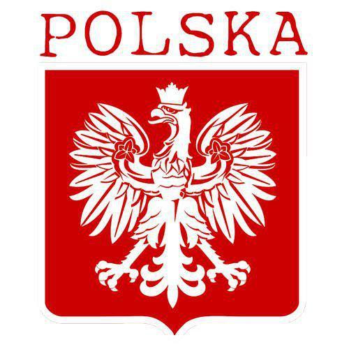 Репетитор польского языка в Киеве